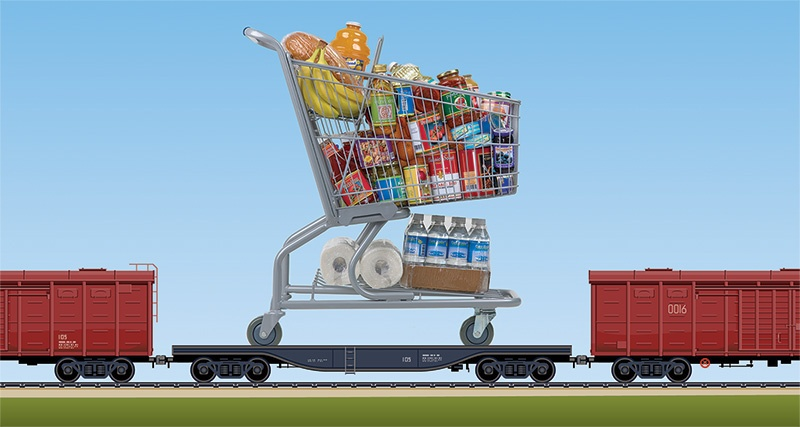 riding-rails-grocery-cart-2