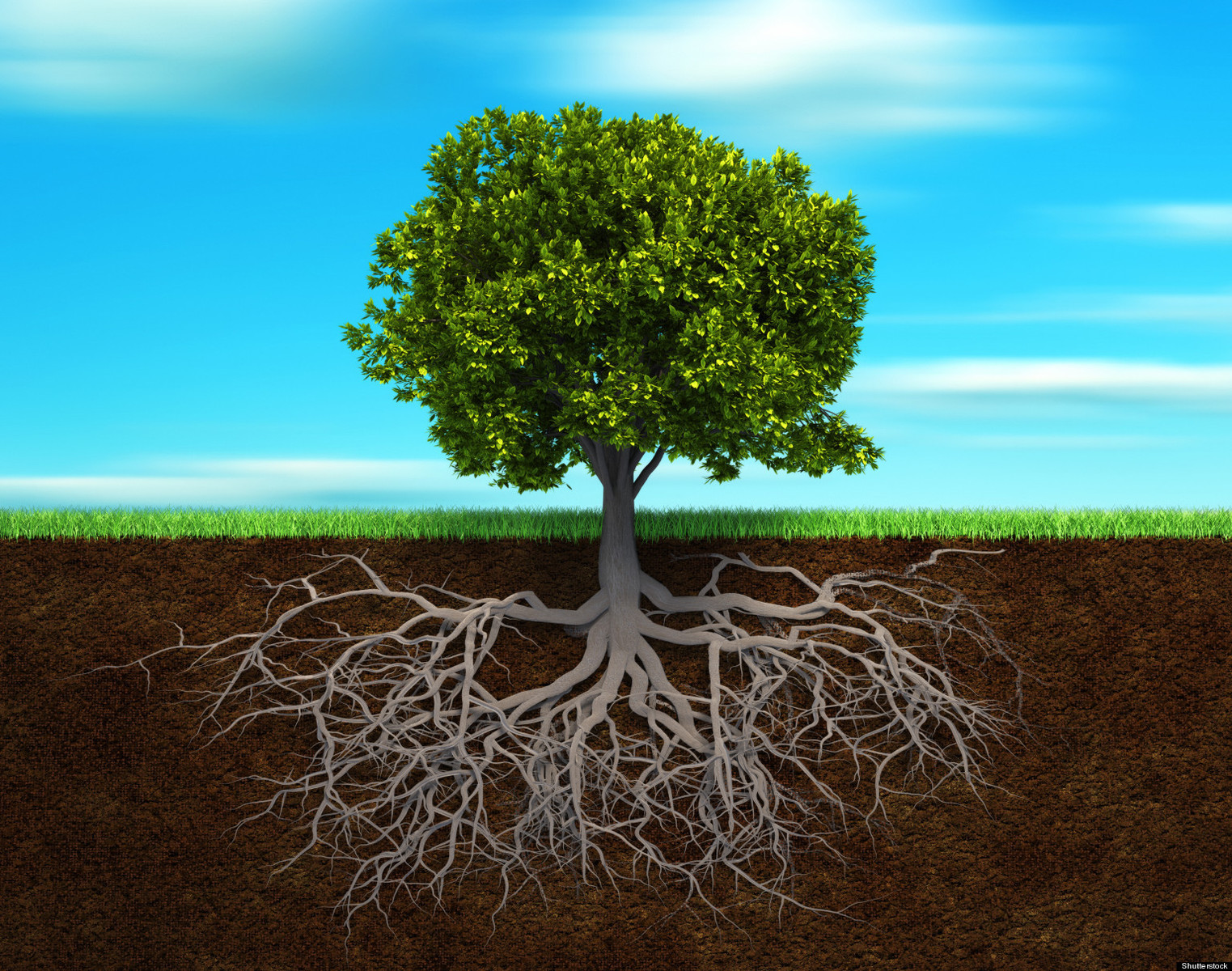 Logistics M&A--companies need deep roots